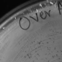 Thumbnail for OverAchiever