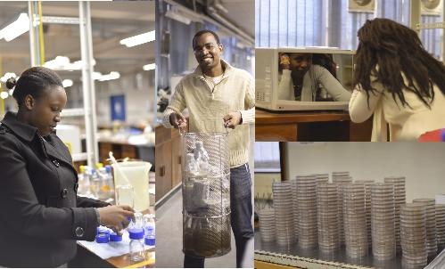 2013K-RITH Mycobacterial Genetics Course