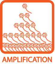 Amplification Icon
