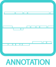 Annotation Icon