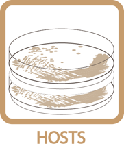 Hosts Icon